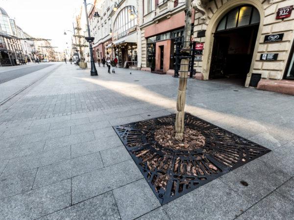 Krata żeliwna pod drzewo zdjęcie na tle zabytkowej kamienicy malaarchitektura.info.pl
